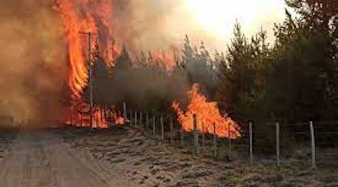 Argentina Otra Vez en llamas